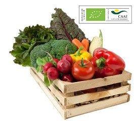 fruta-verdura-ecologica