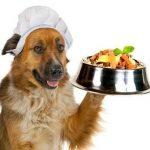 Frutas y verduras que pueden comer los perros